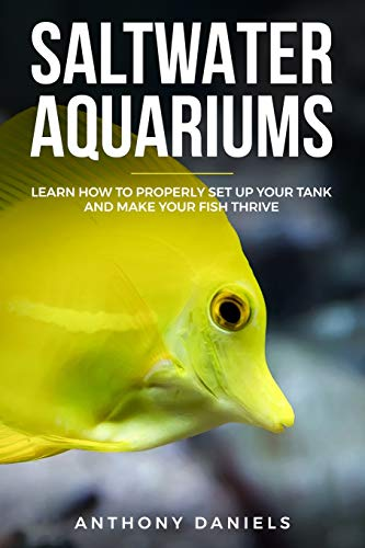 Saltwater Aquariums: Learn How to Properly Set Up Your Tank and Make Your Fish Thrive