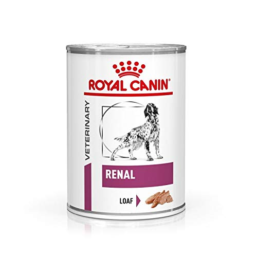 ROYAL CANIN Alimento Cane Renal - 410 gr