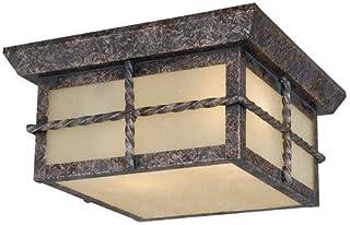 Amazon Com Ceiling Light Fixtures Patriot Ceiling Lights Lighting Ceiling Fans Tools Home Improvement