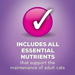سعر Purina Friskies Wet Cat Food Variety Pack