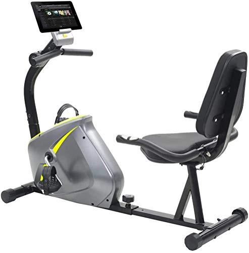 FTVOGUE- Bicicleta Estática con Respaldo Bicicleta Reclinada Fitness Indoor para Adulto