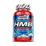 AMIX - Complemento Alimenticio - HMB - 120 Cápsulas - Calidad Farmacéutica - Incrementa la Fuerza - Previene el Catabolismo Muscular - Ideal Suplemento Alimenticio para Deportistas