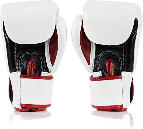 Fairtex Muay Thai Boxing Gloves BGV1 Color: Black Blue Red Yellow White Size : 10 12 14 16 oz. Training Sparring Gloves for Kick boxing MMA K1 (Blue, 14 oz)