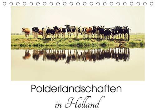 Polderlandschaften in Holland (Tischkalender 2021 DIN A5 quer)