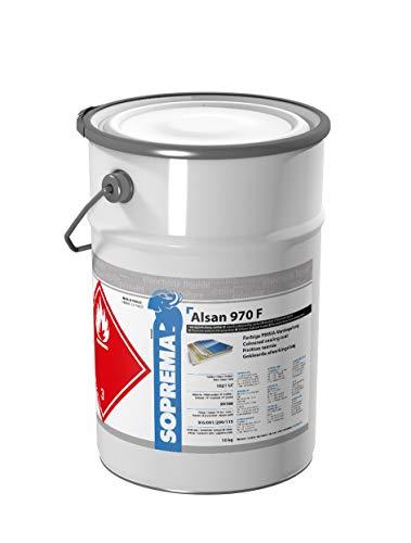 ALSAN PMMA Versiegelung - 970 F - 10,0 kg/Gebinde - RAL 7035 lichtgrau - 2-komponentig inkl. Katalysator | ALSAN 970 F dient als farbige Versiegelung auf ALSAN PMMA Systemen