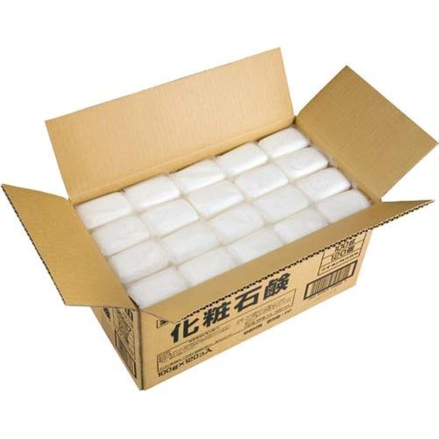 状態管理バウンドライオン 植物物語 化粧石鹸 (100g×120入)