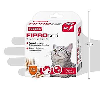 BEAPHAR - FIPROTEC 50 mg - Solution spot-on au Fipronil pour chats (> 1 kg) – Traite les infestations par les puces – Tue les tiques présentes sur le chat en 48 h – 4 pipettes de 0,5 ml