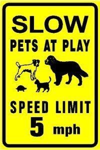 BridgetWhy50 Vitesse Limite 5 Mph Slow Down Pets at Play Dog Cat Tortue Animal Panneau de sécurité décoratif 20,3 x 30,5 cm