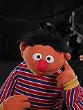 Sesame Street 50th Anniversary Memories
