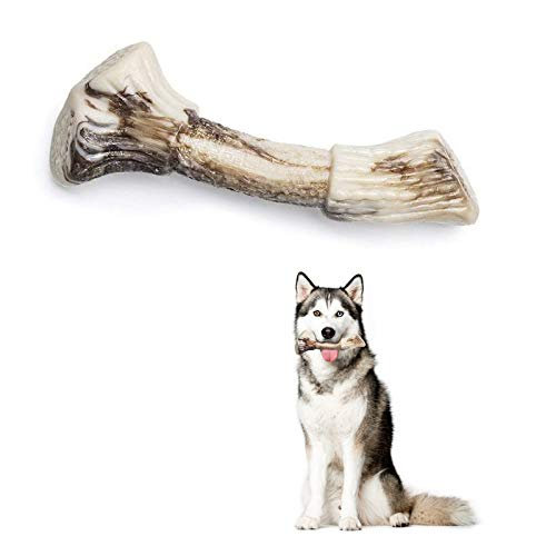 PETSLA Dog Toy for Aggressive Chewers Durable Dog Chew Toy Made with Nylon Heavy Duty Hard Tough Dog Toy for Medium Dog Large Dog and Teething Puppies (Nylon Antler Bone, Dogs up to 55 lb)