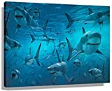 JRLDMD Laminas para Cuadros Paisaje Natural Animal acuático Grupo de Tiburones Paisaje Decoracion de Pared póster artístico impresión de Pared Cuadros Lienzo 60x90cm x1 Sin Marco