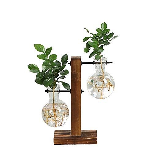 Ysoom Glasvase Flora, Desktop Glas Übertopf Vase, Glas Vase Verschiedene Größen mit Retro Solid Holz Ständer Hydrokultur Pflanzen Home Garten Hochzeit Dekor