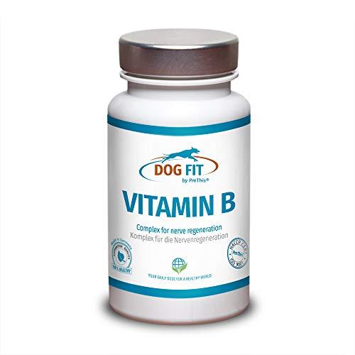 DOG FIT by PreThis® Vitamin B Komplex für Hunde | Vegan | Nervensystem, Inkontinenz, Spondylose, Demenz & Sehschwäche | Hochdosierte B-Vitamine Biotin Folsäure