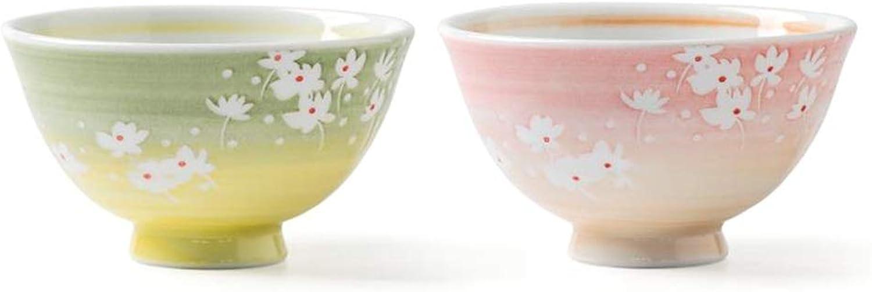 Teng Peng Bol, ustensiles ménagers, Bol Peint à la Main, Bol à Dessert Bol à Porridge - Lot de 2 Bol en Porcelaine avec Plomb (Couleur   Bowl)