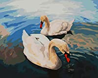 DIY 数字 油絵 塗り絵 キット 大人 子ども 塗り絵 美しい白鳥 デジタル油絵 手塗り 数字キットによる絵画 絵かき インテリア 壁飾り ホームデコレーション 40x50cm(額縁なし)
