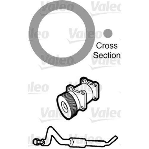 Valeo 509753 JOINTS CLIM SACHET 20 PCE