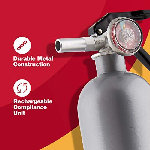 FIRST ALERT Fire Extinguisher, Designer Home FireExtinguisher,Pewter, 2.5 lb, DHOME1 FE1A10GR