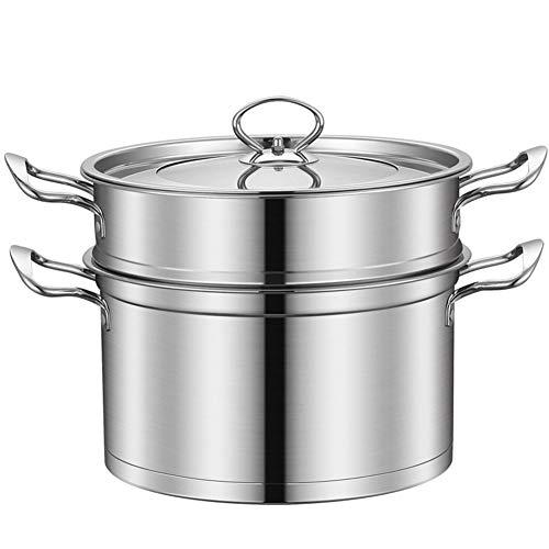 YALIXI Dampfgarer 26Cm 2 Tier Edelstahltopf, Mit Glasdeckel Und Griff, Zum Kochen Von Gemüse Und Fleisch Hühnchen/Lamm/Rindfleisch