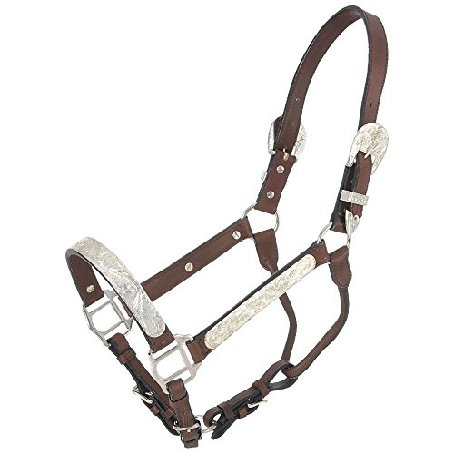 Royal King Silver Bar Show Halter Dark Oil