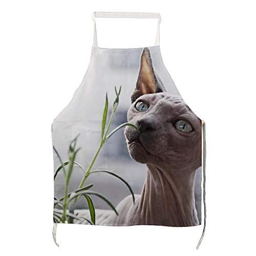 Schort Sphynx Kat in Voorkant van Plant voor Polyester met Mannen en Vrouwen voor Koken, Barbecue en Bakken met Zakken
