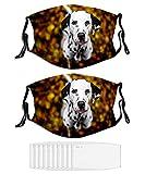 Great Danes Face Mask Windproof Animal Dog Masks for Adult N820