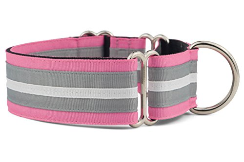 """If It Barks - 1.5"""" Martingale Collar for Dogs - Adjustable - Nylon - Strong and Comfy - Ideal for Training - Made in USA - Large, Spunky"""