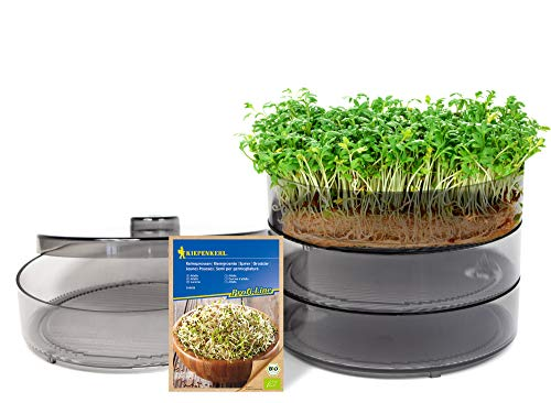 mgc24® Keimbar - Keimsprossenbox zur Anzucht von Keimsprossen mit 4 Keimschalen und Deckel - Set inkl. 1x Kiepenkerl Bio Keimsprossen Alfalfa