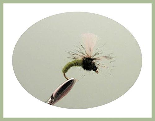 Klinkhammer Trout Fliegen, 6Pack olive klinkhammers, Auswahl von Größen, Fly Angeln