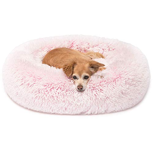 Friends Forever Donut Bed
