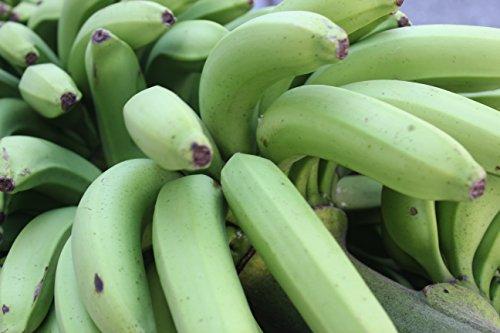 沖縄産三尺バナナ1kg