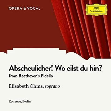 Beethoven: Fidelio, Op. 72: Abscheulicher! Wo eilst du hin?