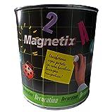 Pintura efecto magnético (código 390063)