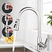 Dalmo Kitchen Faucet with Pull Down Sprayer
