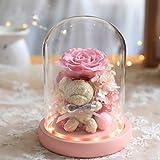ブリザードフラワー,手作りはバレンタインデー記念誕生日のためにガラスのドーム、永遠のローズフォーエバーローズ、ギフトにローズ決して枯れたバラの花を維持しました (Color : Pink, Size : 19cm)