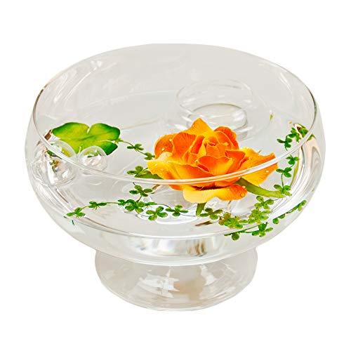 Glaskönig Runde Glas-Schale Roxy 75 Höhe 11cm ø 17cm | Flache Dekoschale auf Fuß mit Dekorations Set Rose orange | Dekoglas als Geschenkset Dekoration inklusive Deko Komponenten | Deko-Wohnzimmer