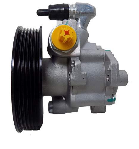 Servopumpe Hydraulikpumpe P1320HG von ATG, Zertifiziert, 1 Jahr Garantie