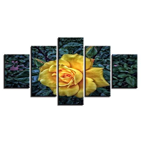HD poster print modern 5 stuks mooie gele bloem modulaire canvas schilderij decor woonkamer muur stilleven kunst foto's (geen frame) 10x15 10x20 10x25cm