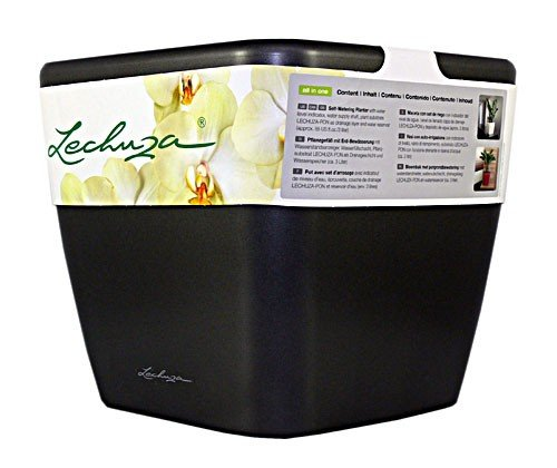 Lechuza Planter Quadro 21 Charcoal High-gloss All-in-one Set