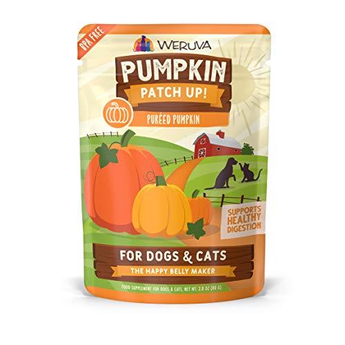 Weruva Pumpkin Patch Up! Pumpkin Puree For Dogs & Cats | Chewy
