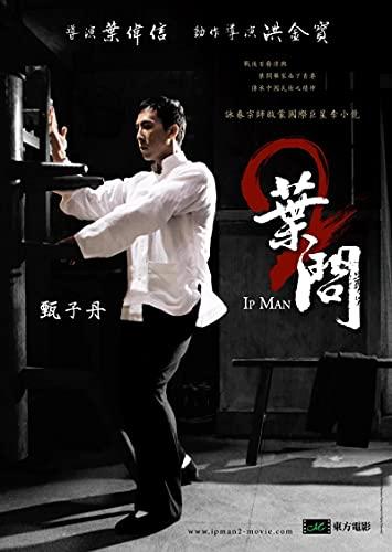 YYAYA.DS Lona Pared Arte Chino Kongfu Movie IP Man Art Poster Arte de la Pared Pintura Decorativa para el hogar 60x90cm