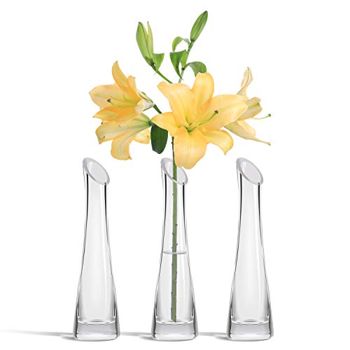 ComSaf Florero de Cristal Conjunto de 3, Pequeña Jarrón Decorativo de Vidrio para Flor y Plantas, Diseño Moderno y Delgado, Transparente, Decoración de la Oficina en Casa, 24CM de Altura