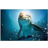 KBIASD 海景ポスターとプリント壁アートキャンバス絵画壁の装飾リビングルームの壁のためのかわいいイルカの写真-40x60cmフレームなし