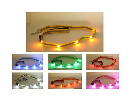 Wags Forever Bietet eine LED-Hundeleine. Diese beleuchtete Leine ist 122 cm lang mit starken Edelstahlteilen und beleuchteten Hundeleine hat 5 helle Juwelen-LEDs.