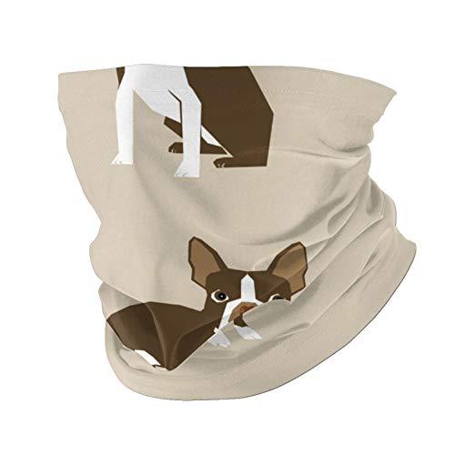 Ccycjasdkfewl Brown Boston Terrier Dog Variedad Cara Toalla Interior Bolsa Polaina Cuello Cubierta Cara Bufanda Protección Cuello