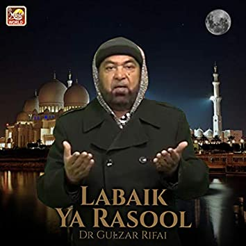 Labaik Ya Rasool - Single