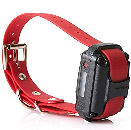 Educator Additional Receiver and Collar for Pro Advanced Dog Training Collar System, Red