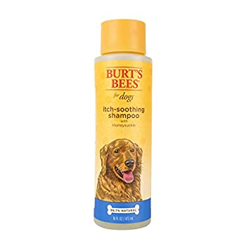 Burt s Bees for Dogs Itch Soothing Shampoo with Honeysuckle   Anti-Itch Dog Shampoo for Dogs with Sensitive Skin   Cruelty Free Sulfate & Paraben Free pH Balanced for Dogs - Made in the USA 16 Oz