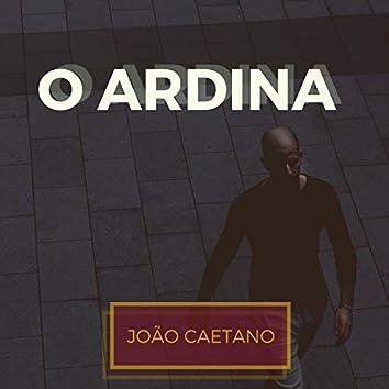 O Ardina