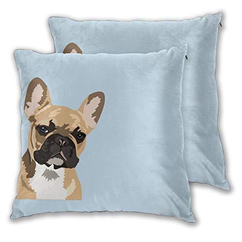 Set di 2 federe quadrate per cuscino con bulldog francese carino francese francese francese francese per la casa, per camera da letto, divano, soggiorno, 45 x 45 cm