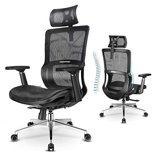 MIISLAIN Ergonomic Office Chair